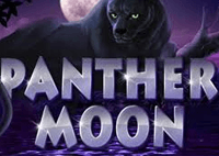 freebet_panther_moon