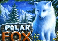 freebet_polar_fox