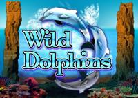 Игровой аппарат Wild Dolphins (Дикие Дельфины) бесплатно на FreeBetSlots